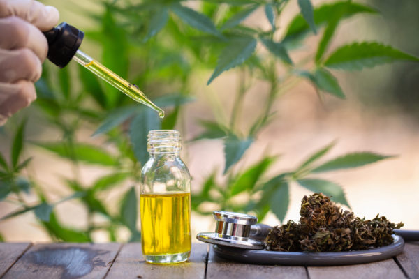 Hemp oil, Medical marijuana products including cannabis leaf, dried bud, cbd and hash oil over