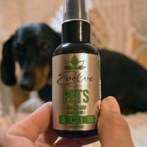 evolve cbd pet spray